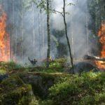 64/2018 – Stanovení konce doby zvýšeného nebezpečí požárů